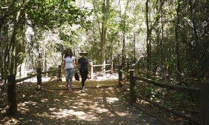 Aberta consulta pública sobre concessão de parques do RS
